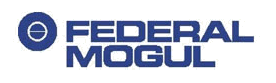 CSI Customer - Federal Mogul